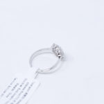 6972229393574Silver GZ Zircon Flower Ring (4)